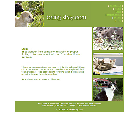 beingstray.com