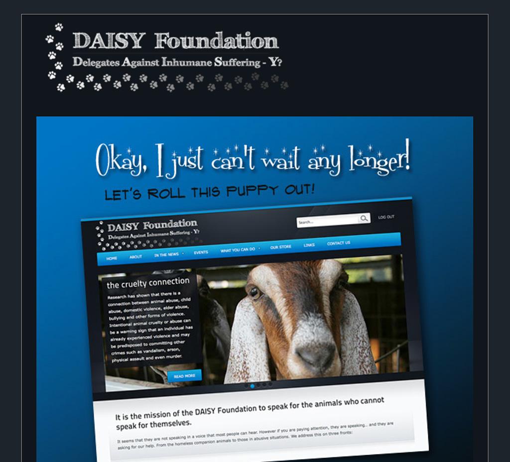 Daisy Foundation Email