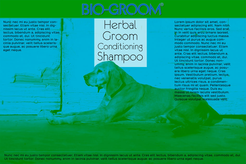 BioGroom Pet Shampoo