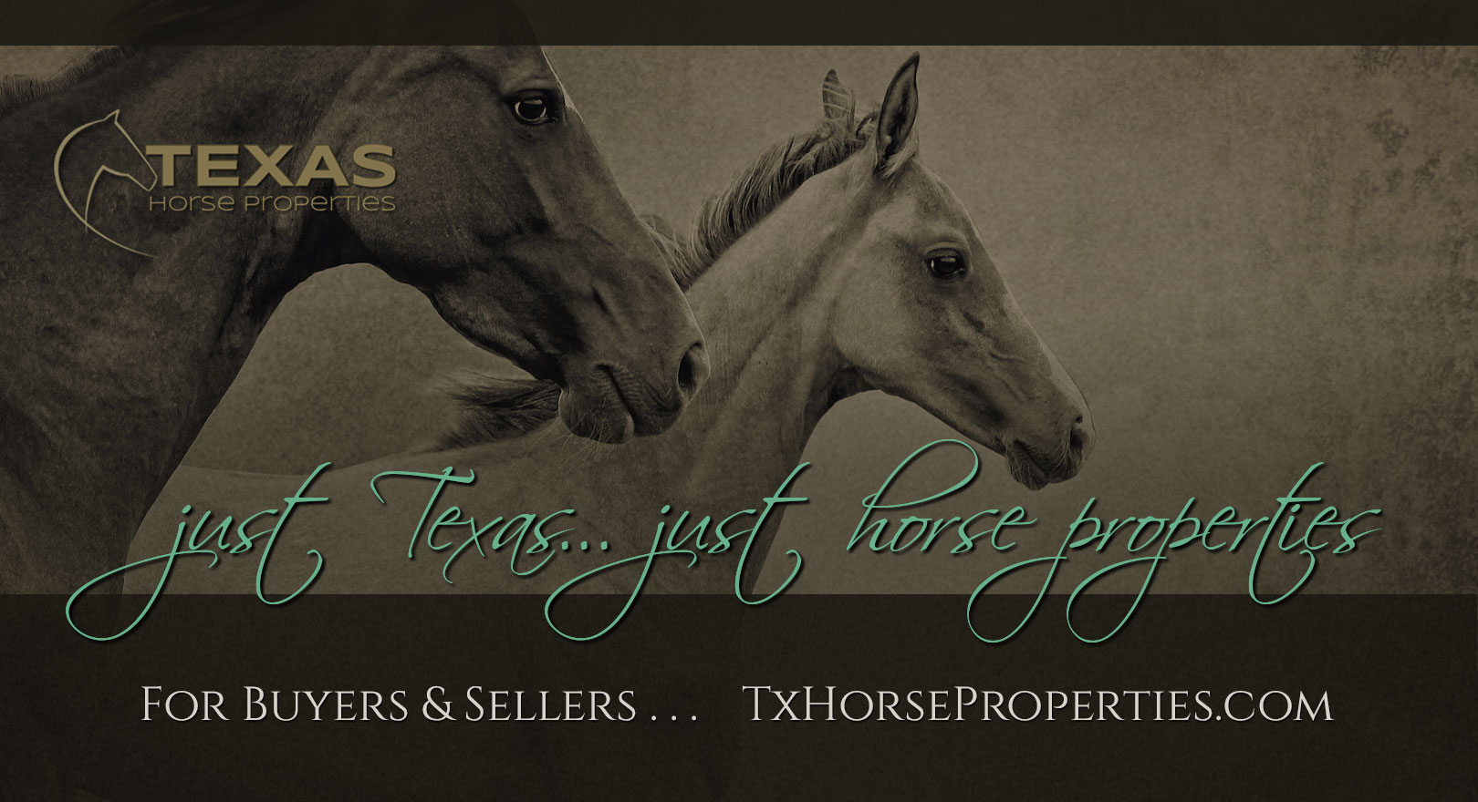 Texas Horse Properties