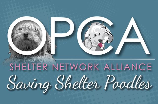 OPCA Shelter Network Alliance