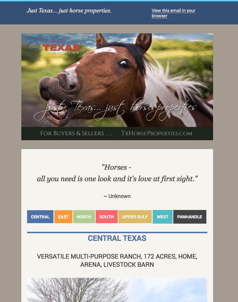 Tx Horse Properties eBlast
